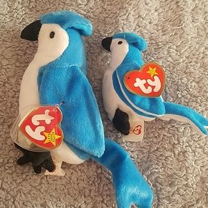 TY set of  rocket the blue jay. 2 sizes